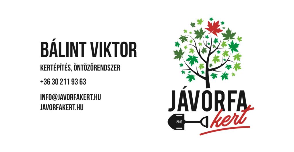 balint-viktor-javorfakert-kertepites-ontozorendszer